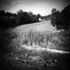Gully (rustman) Tags: blackandwhite bw square iso3200 grain 11 pinhole worldwidepinholephotographyday 22mm gf1 f128 dynamicblackandwhite panasoniclumixgf1 pinwide wanderlustpinwide