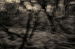 tank hill viii (Kenneth Rowe) Tags: tankhill icm multipleexposures intentionalcameramovement d7000