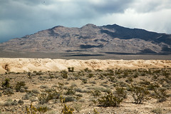 Tule Springs Fossil Beds National Monument (wyojones) Tags: iceage lasvegas beds nevada np pleistocene sedimentaryrocks fossilbeds gasspeak lasvegasrange nationalparksystem wyojones tulespringsfossilbedsnationalmonument