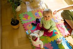 DSC_3403.jpg (Kaminscy) Tags: fun toy room sunny teddybear mis zabawa pokoj slonce zabawka doniczka