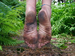 Stained soles (Barefoot Adventurer) Tags: texture nature leather woodland walking toes arch natural arches soil pineneedles barefoot barefeet connected ferns soles anklet barefooted barfuss barefooting barefoothiking strongfeet barefooter healthyfeet baresoles leathersoles wrinkledsoles callousedsoles blacksoles livingleather naturalsoles stainedsoles ruggedsoles