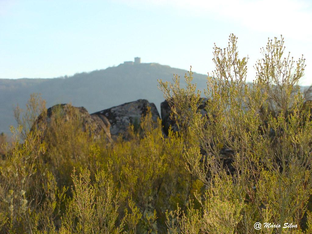 Águas Frias (Chaves) - ... vislumbrando o Castelo de Monforte por entre a vegetação ...