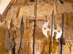 Medieval pikes (quinet) Tags: uk england castle unitedkingdom northumberland pikes schloss bamburgh chteau grossbritannien brochet grandebretagne