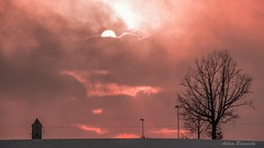 Dramatic red sunset glow.... (acbrennecke) Tags: sunset red sun tree backlight nikon dramatic nikon5500 achimbrennecke