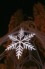 Stellar Dendrites (A Great Capture) Tags: city winter urban snow toronto ontario canada night dark snowflakes lights casa downtown december photographer decoration canadian gazebo nighttime stellar nights flakes magical winterland loma dcembre on lhiver agc casaloma 2015 dendrites ald ash2276 adjm stellardendrites ashleylduffus wwwagreatcapturecom agreatcapture