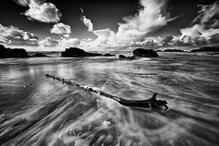 (rainbow wasabi) Tags: ocean winter white seascape black beach nature monochrome oregon season landscape coast waves pacific northwest central driftwood rainy