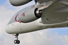 QR0003 DOH-LHR (A380spotter) Tags: london heathrow engine landing belly finals landinggear airbus a380 arrival powerplant approach 800 qr lhr qatar threshold undercarriage qatarairways qtr egll turbofan nosegear  27r enginealliance gp7200 athba runway27r shortfinals dohlhr gp7270  a7apa msn0137