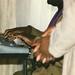 13.Prayer.BlackGayPride.WDC.26May1996