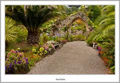 Empty Garden (flatfoot471) Tags: summer england holiday cornwall unitedkingdom normal tresco islesofscilly abbeygardens 2015