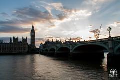 Westminster (andrea.prave) Tags: uk bridge sunset england london westminster thames river atardecer zonsondergang tramonto sonnenuntergang fiume londonbynight bigben palace prdosol londres londra  solnedgang inghilterra tamigi solnedgng puestadelsol   coucherdusoleil