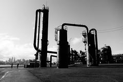 Gas Works Park. Seattle, WA. March 2016. (poopoorama) Tags: seattle blackandwhite washington engagement eric unitedstates heather fujifilm gasworkspark xseries dannyngan wclx100 x100t dannynganphotography