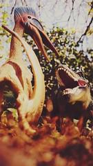 battle of kings 2 (Chris Blakeley) Tags: seattle toy dinosaur tyrannosaurus pterosaur toydinosaur hipstamatic