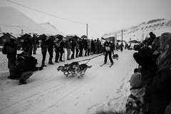 Trappers Trail Spitsbergen (Jake Vince) Tags: dog sport norway race outdoor svalbard trail sledding vehicle spitsbergen sledge trappers
