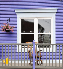 Purple Porch (wyojones) Tags: pink flowers white house canada color reflection building window glass yellow newfoundland purple painted gray stjohns number step porch np rockingchair railing watercan jellybeanrow wyojones