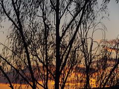 Sonnenuntergang (gittermasttyp2008) Tags: sunset sky sun art abend energy sonnenuntergang sundown sommer energie himmel sunsets sunny sonnig sonne sonnenuntergnge strom highvoltage schnheit strommasten stahl strommast stromleitung sendemast schn starkstrom selten spatziergang stahlmast stahlgittermast stromschlaufen sonnenuntergangstrommast
