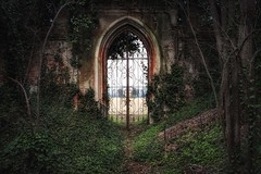 the escape (Andy Schwetz - I LOVE DECAY) Tags: italy abandoned nature fairytale lost italia decay ruin haunted forgotten castello verlassen urbex modernruins zamek vergessen lostplace abbandonata schlos ilovedecay canon5dmkii andyschwetz heartwoks