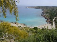 Konos Bay (Serghei Zadorojnai) Tags: sea cyprus 2012 grecianpark konosbay 201204 20120401