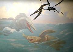 Mesozoic Ocean (edenpictures) Tags: chicago art skeleton fossil skull marine mural reptile bones prehistoric extinct archelon pterosaur giantseaturtle mosasaur fieldmuseumofnaturalhistory charlesknight