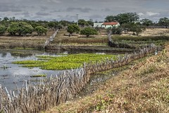 Serto de Crates (felipe sahd) Tags: brasil landscape farm cear campo fazenda nordeste aude independncia flickrtravelaward sertodecrates