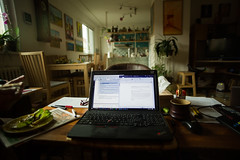 360-366 In this crazy weather I'm working in my parents livingroom - a lot of tea and words, words and words.jpg (Alžběta Pilařová) Tags: home work student laptop 360 icon study 365 endofsemester 366