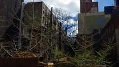 """And the Seasons They Go Round and Round"" (catchesthelight) Tags: building industrial manhattan bluesky views springvisit travelbycar april2016 earlyspringinnewyorkcityny"
