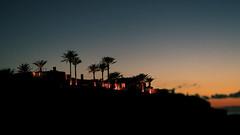 Sunset over coast (Pehuén Baravalle) Tags: light sunset field grass silhouette buildings island coast model natural outdoor colorfull palm ibiza mansion es cala backlighting shootout ciity caleta calita vedra georgiana comta