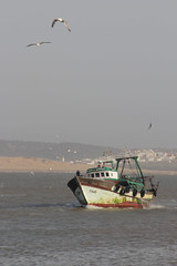 Boat entering Essouira port (nyoz_fr) Tags: travel mountains cat morroco maroc atlas