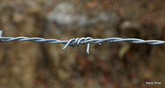No go area (Kaniz Khan 2009) Tags: sign fence wire bokeh twirl barbedwire block twisted