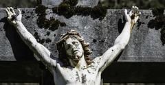 Solitude (loneliness) (Larch) Tags: france statue moss solitude loneliness christ cross neglected abandon forgotten lichen suffering pity mousse croix jesuschrist souffrance sixt jésus hautesavoie oublié pitié cruxifiction àlabandon sixtleferàcheval
