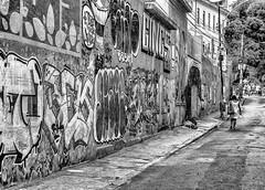 Rua Teotnio Regadas, Ro de Janeiro (Edgardo W. Olivera) Tags: street brazil people bw muro southamerica wall brasil lumix graffiti calle janeiro gente grafiti homeless panasonic rua sudamrica gh3 microfourthirds microcuatrotercios edgardoolivera teotnioregadas