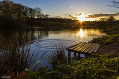 On Golden Pond (Carl Yeates) Tags: sunset sun colour water canon golden still pond ripple carrmill 550d carlyeates