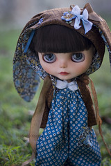 chocolate and blue (JennWrenn) Tags: blue brown print doll handmade chocolate sewing cotton jacket hoody meredith blythe custom romper lorshekmolseh