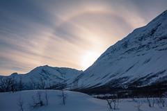 To the ones staring at the sun... (Laurent Moose) Tags: snow ski norway norwegen halo best berge excellent mountaineering troms skitour troms skimountaineering lyngen explored cloudsstormssunsetssunrises