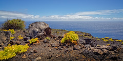Colors of La Palma (memories-in-motion) Tags: blue light sea black green nature colors contrast zeiss canon landscape photography eos lava islands licht flora meer outdoor hiking kanaren natur pflanzen filter lee land 5d canary grn blau lapalma landschaft schwarz farben distagon 21mm 06nd