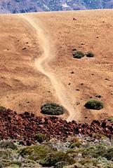 over the top (bnicoll2020) Tags: volcano caldera teide canaryislands