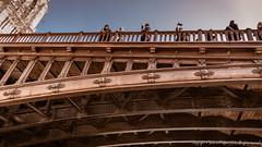 _DSC7487 (workers99) Tags: bridge paris france riverseine