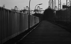 Mauer / Wall (Andreas Meese) Tags: street railroad sun wall wire nikon sonnenuntergang sundown crane path strasse tag hamburg tracks railway pylon cranes wires mast hafen bahn sonne kran grasbrook kleiner weg mauer kabel catenary schienen wilhelmsburg oberleitungen bahnanlage d5100