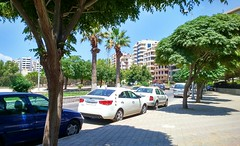 (nesreensahi) Tags: road street trees cars nature landscape syria siria  syrie latakia