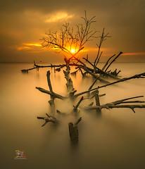 Warming Sun (Jose Hamra Images) Tags: sunset sunrise indonesia landscape jakarta tangerang banten teluknaga