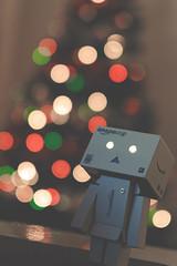 Danbo Christmas (Chrisimply) Tags: christmas danbo amazoncojp danboard
