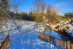 Çayırova'dan Kar Manzaraları 22