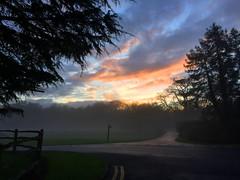 Foggy Sunset (Marc Sayce) Tags: park sunset mist tree fog forest downs oak alice south foggy national signpost holt horn bucks wrecclesham blacknest