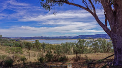 40 Degree (jrazarcon) Tags: road lake water rain clouds 35mm landscape cow cattle sheep outdoor farm f14 au arts australia newsouthwales temperature degree dg ruralaustralia hsm nikond810 mumbil johnazarcon jrazarcon