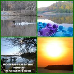 2016 resolve Virginia State-d (vastateparksstaff) Tags: collage text resolve