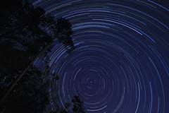 Happy Trails! (GNPlover) Tags: sky canon georgia stars backyard sigma astronomy nightsky startrails lightroom polaris stargazing northstar exploregeorgia