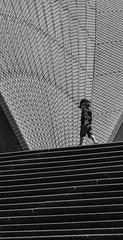 Between the lines (SydneyLens) Tags: street city people monochrome lines mono au sydney streetphotography australia newsouthwales operahouse sydey sydneycity