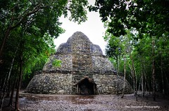 Coba (available now on getty images) (Rex Montalban Photography) Tags: mexico ruins coba yucatan jungle hdr mayanriviera rexmontalbanphotography