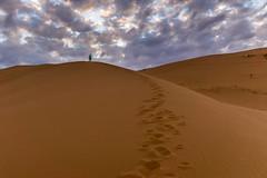 Tough Walk (g.aftermath) Tags: light art desert sony sigma riyadh 19mm a6000