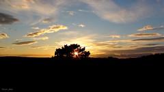Naplemente a dombok fltt (Van'elise) Tags: felh tjkp tli fot naplemete