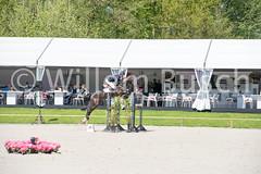 Willem-Busch-fotografie-20150510-DSC_3744-201.jpg (Wim Busch Fotografie) Tags: dustin jumpingschrodertubbergen2015 akzonobelprijs7jarigenjumpingschroder2015 michelhendrixjumpingschroder2015